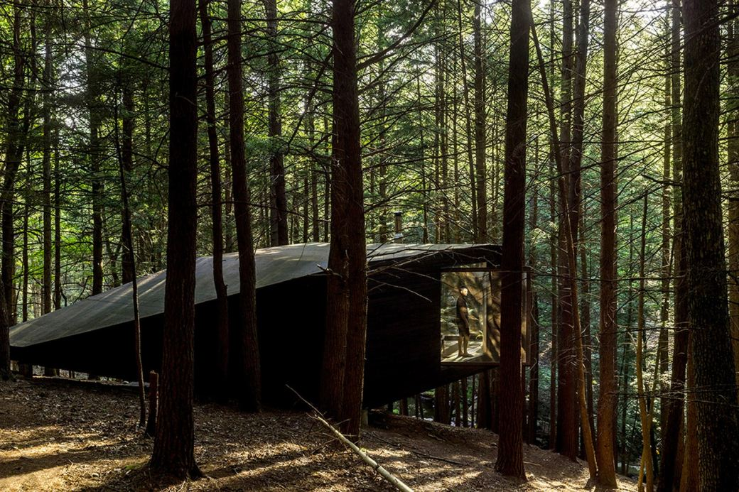 http3a2f2fhypebeast-com2fimage2f20172f102fhalf-tree-house-jacobschang-architecture-2