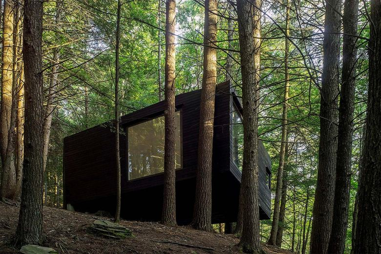 http3a2f2fhypebeast-com2fimage2f20172f102fhalf-tree-house-jacobschang-architecture-3