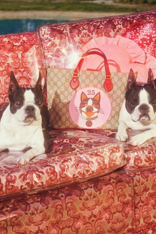 gucci-chinese-new-year-capsule-collection-3
