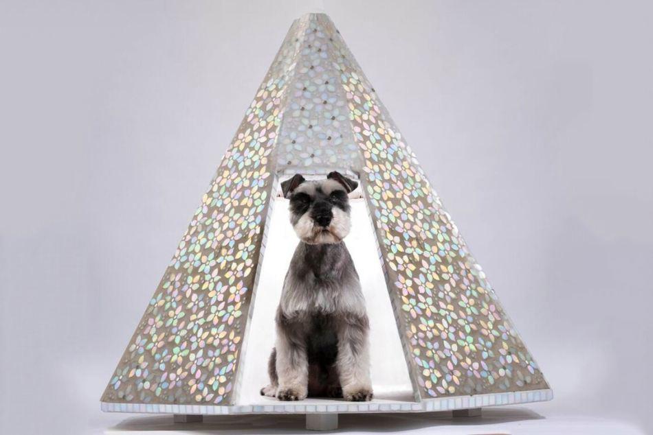 bowwow-haus-london-exhibition-zaha-hadid-dog-kennel-4