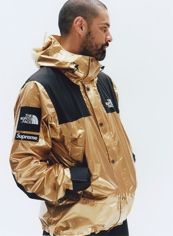 supreme-the-north-face-metallic-spring-2018-02-585x800