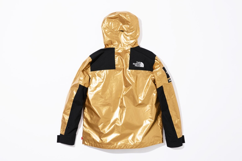 supreme-the-north-face-metallic-spring-2018-07