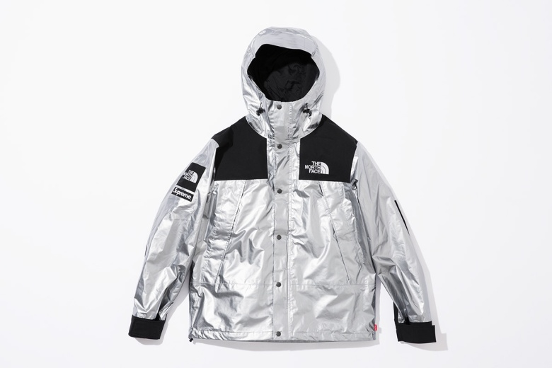 supreme-the-north-face-metallic-spring-2018-08