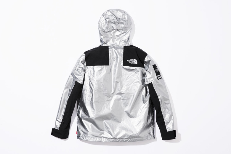 supreme-the-north-face-metallic-spring-2018-09