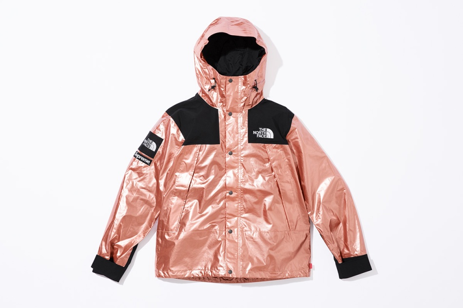 supreme-the-north-face-metallic-spring-2018-10