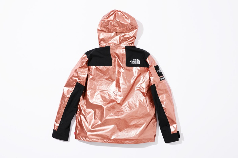 supreme-the-north-face-metallic-spring-2018-11