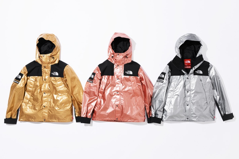 supreme-the-north-face-metallic-spring-2018-12