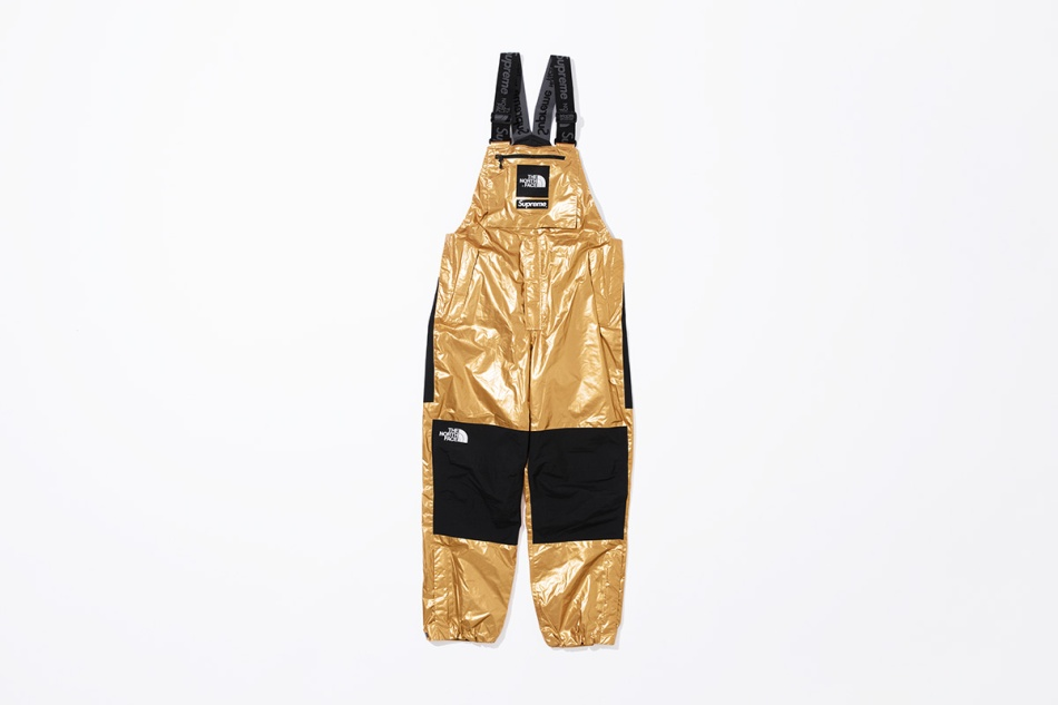 supreme-the-north-face-metallic-spring-2018-13