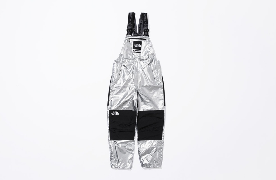 supreme-the-north-face-metallic-spring-2018-15