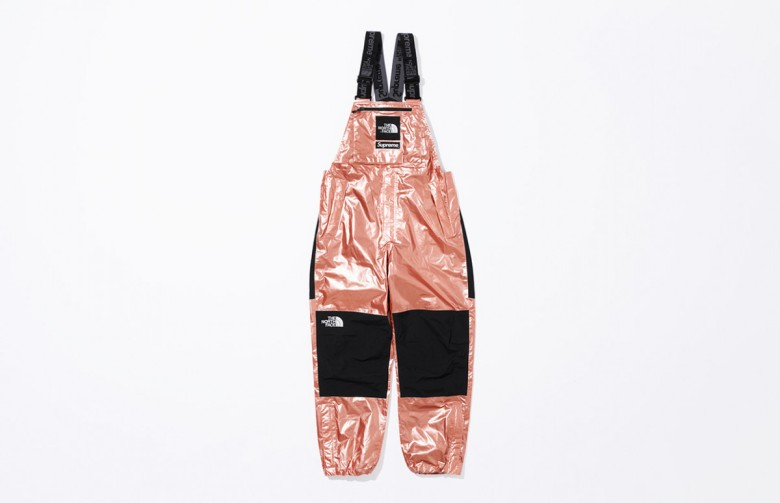 supreme-the-north-face-metallic-spring-2018-16-1200x775
