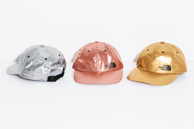 supreme-the-north-face-metallic-spring-2018-20