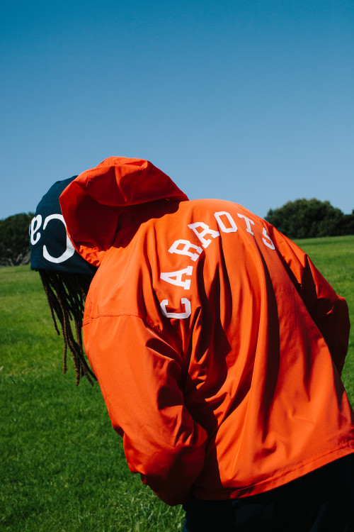 https3a2f2fhypebeast-com2fimage2f20182f062fcarrots-university-by-champion-capsule-collection-lookbook-8